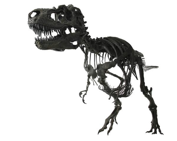 gorgosaurus-1