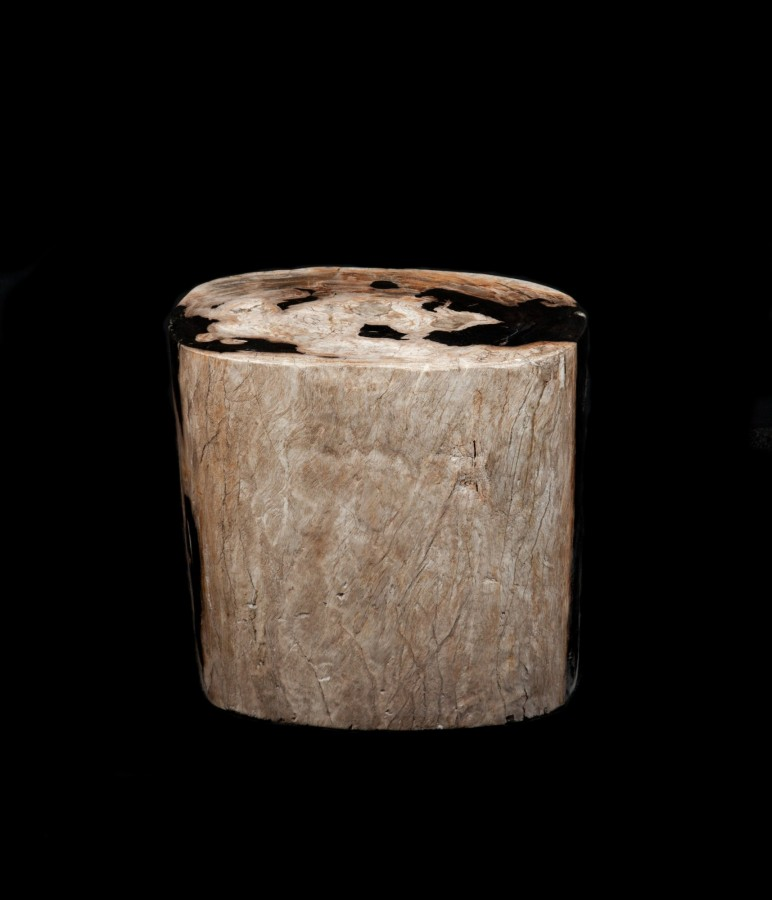 Fossil Wood stool 231