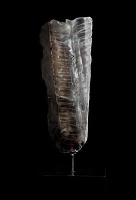 Gypsum1.1 H62cm W25cm D15cm £4000