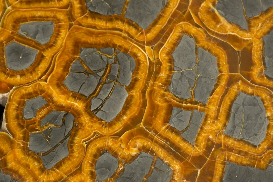 2.4Septarian Table H49.5 W126 D107cms £25,000 no legs