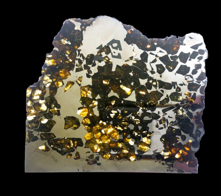 Pallasite Meteorite £6,000